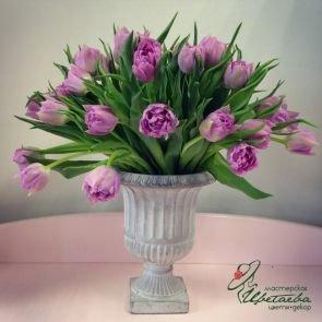 Тюльпаны в вазоне c доставкой в Томске