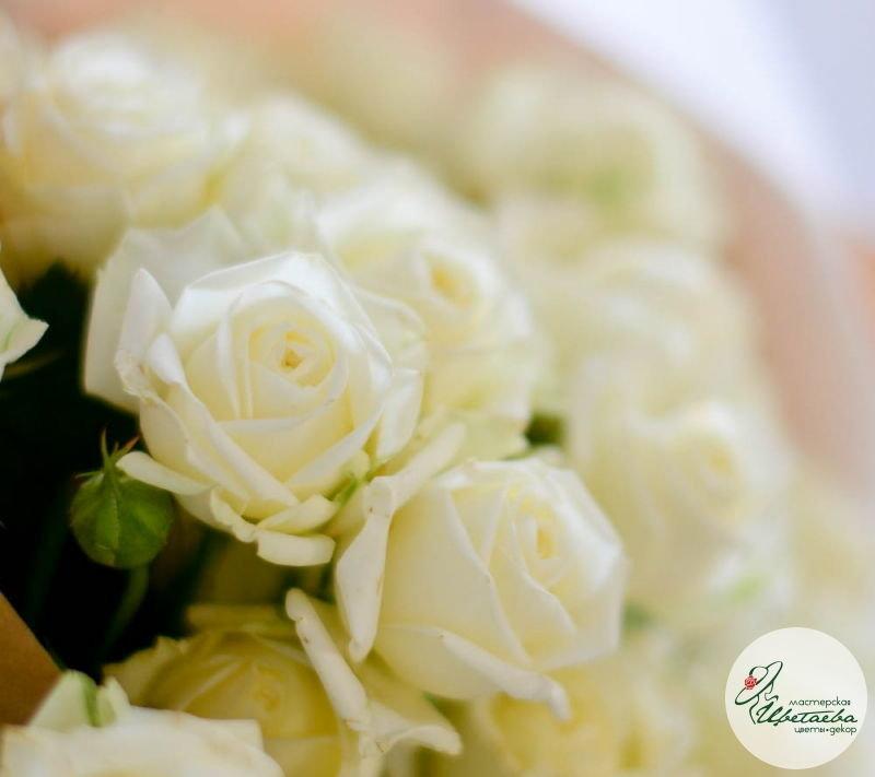 семь кустовых роз макро