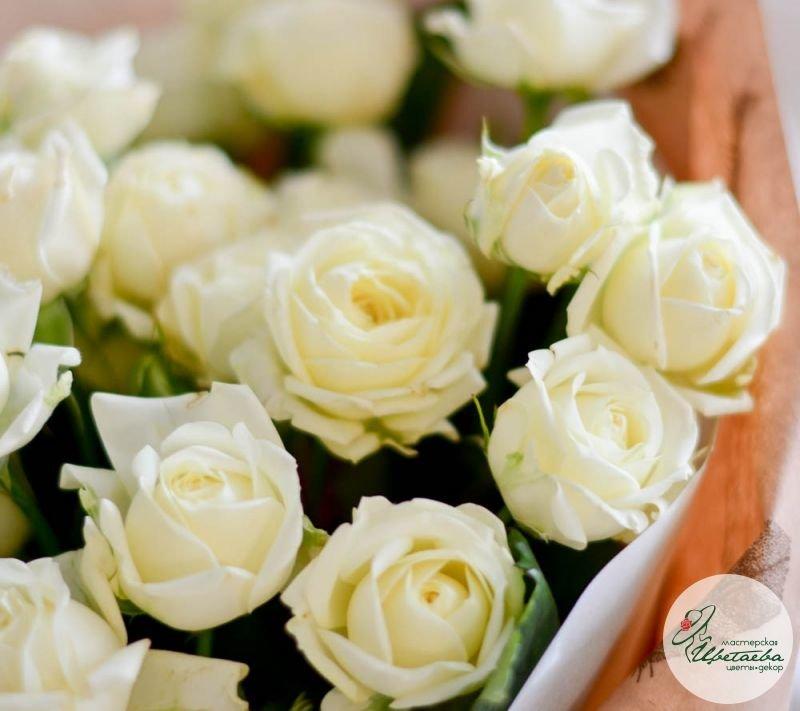 21 белая кустовая роза макро