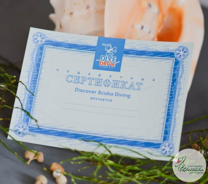 сертификат в дайвинг центр