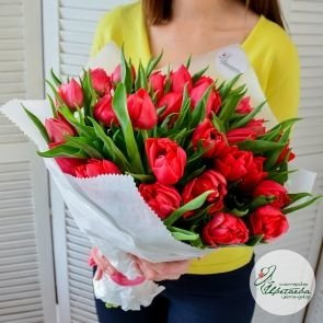 Букет из 51 пионовидного тюльпана
