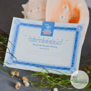 Подарочный сертификат в дайвинг-центр Dive&Drive c доставкой в Томске