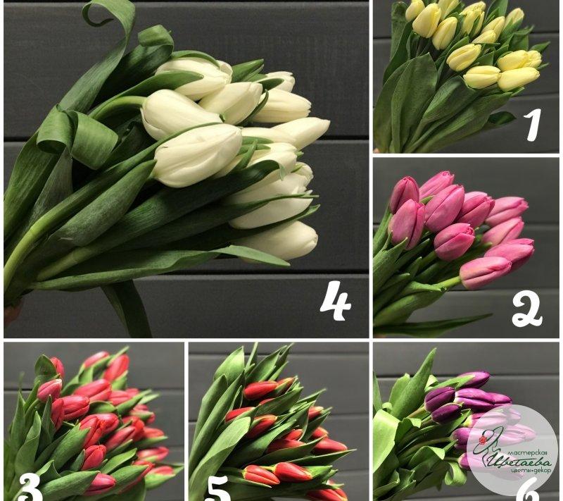 Букет из 51 тюльпана в руках
