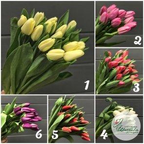 Букет из 101 крупного классического тюльпана