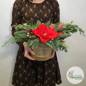 Дополнительные фотографии к товару - Новогодний букет с пуансетией